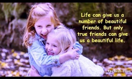 quotes about flowers and friends